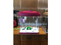 2 x 28l fish tank 1 x hexagonal 1 x pink one both full set up and all work all clean 25 pounds each