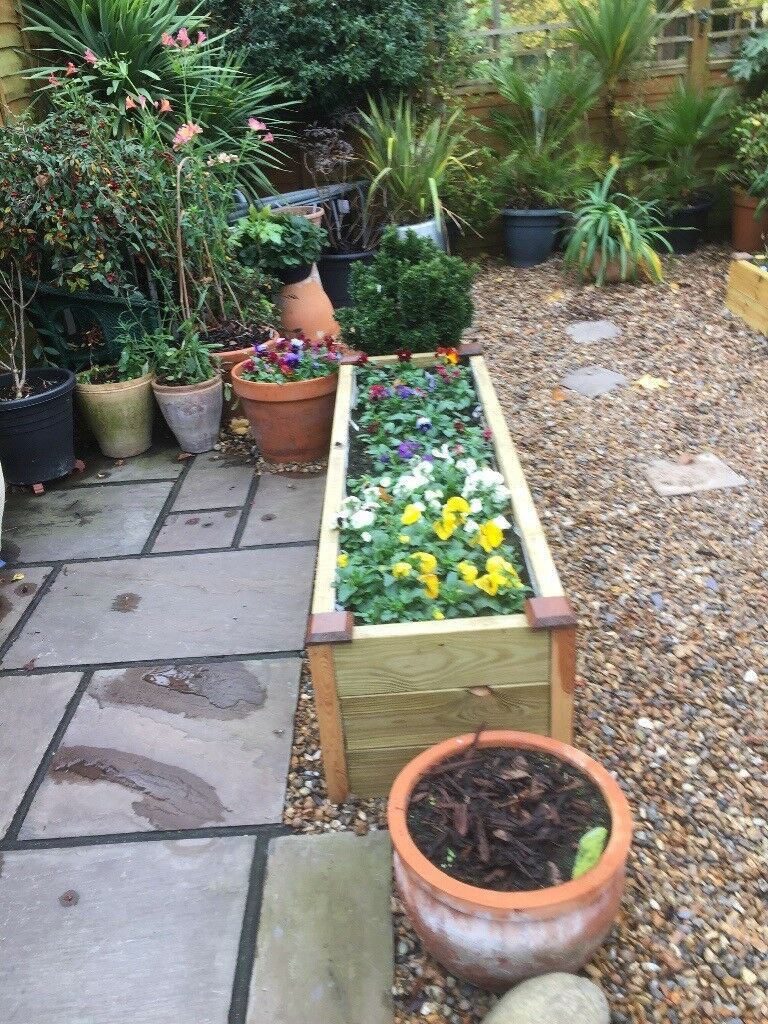 Raised wooden flower beds. 2 or 3 levels.