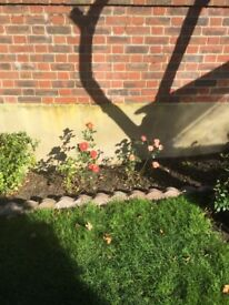 Edging stones and concrete blocks | in Norwich, Norfolk | Gumtree