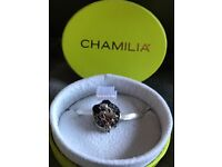 Chamilia Disney Charms