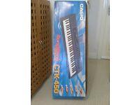 Casio CTK450 keyboard