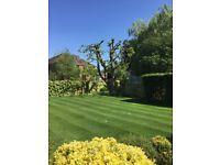 Robert Burton Garden Services