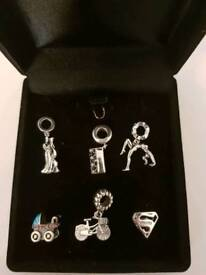 Brand New Silver Charms