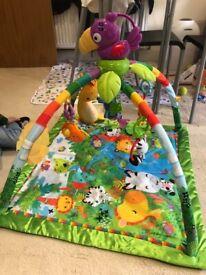 Fisher-Price Rainforest Baby Gym