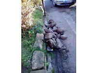 30 plus pieces of rockery stone