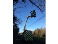 Greenslades Services - Tree surgery - Hedge cutting - Cherry picker Hire - Gutter Services