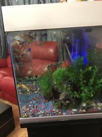 140 l fish tank