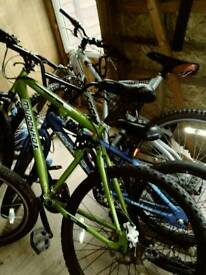 2x mountain bikes and 1 bmx forsale