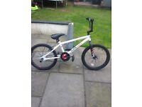 Plain Lazy bmx bike