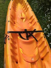 2 person canoe with 2 paddles..used once as new £400