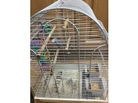 Budgie, 1 Male, Large Cage, 1 Year Food Supply