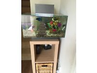 Fluval Edge Aquarium Fish Tank 23 litre