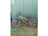 Bike, boys age 8-12