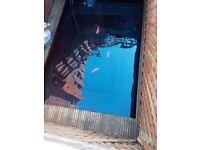 Fish pond and aqua max filto clear filter and pump