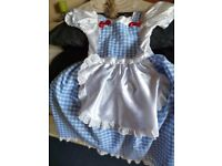 Book day Wizard of OZ Dorothy Fancy Dress age 9-10