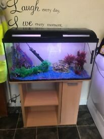Fish tank stand all that's needed