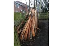 Fire Wood From Shed (Pocklington)