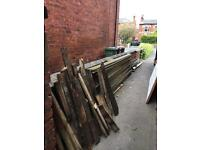 FREE fire wood/timber