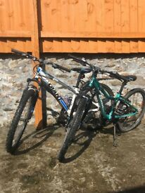 Super pair of Children's Mountain Bikes