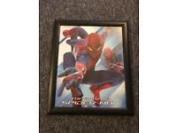 Spider Man framed picture