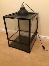 Glass Reptile Vivarium