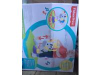 Fisher Price sit and bounce Zebra