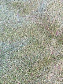 Artificial grass 79cm by 111 cm