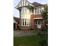 Double bedroom and raised bed in 4 bedroom house close to Musgrove and Town Centre