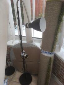 2 black tall lamps