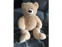 Massive cuddly teddy bear