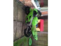 Imaculage zx6r