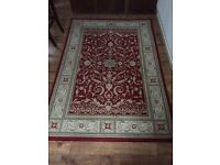 Medium Red patterned rug 1 year old
