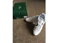 Lacoste Trainers - brand new and in box rrp £75 selling for £60
