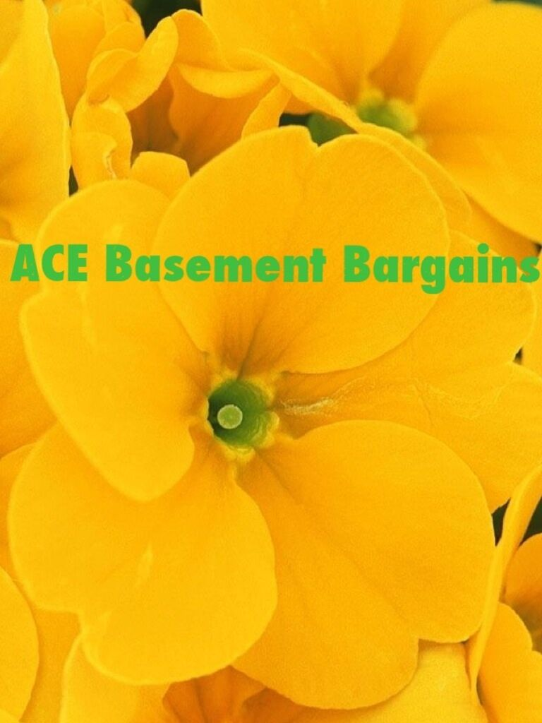 ACE Basement Bargains