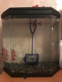 25 litre fish tanks