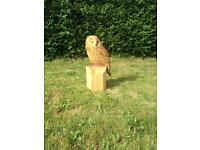Owl chainsaw carved sculpture.