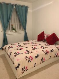 (SingleThai preferred) Brand NEW - double room - rent - big house - garden - All bills