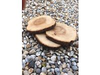 8 large log slices / cake stands £10ea or 8 for £70 ono - great for wedding table centres