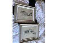 Pair of prints on hard canvas and framed