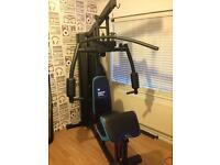 Home Gym Full Setup MULTI GYM Immaculate Condition Used Only A Few Times CHEAP