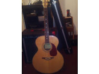 Westfield Jumbo Acoustic