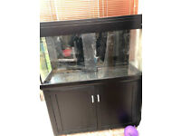 Aqua one 400 Marine tropical fish Tank aquarium Leicester