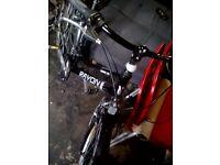 Rayon verso 2.0 ladies bike