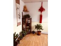 Chinese Deep Tissue and Relax Massage in North London