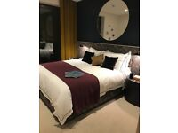 Luxury one bed Flat Full Dss welcome