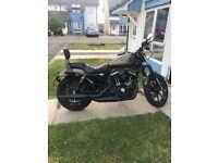 Harley Davidson iron 883 sport