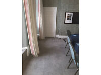 Experienced Carpet and Upholstery Cleaner (10 years) Brighton Hove Sussex