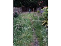Service garden in neasden, wembley, north/west london