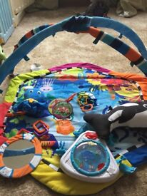 Baby Einstein baby gym in excellent condition with all accessories