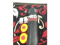 Pro power punch bag and gloves